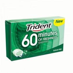 Trident 60 Minutos Menta